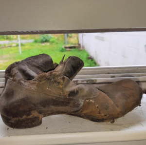 shoe found in wall